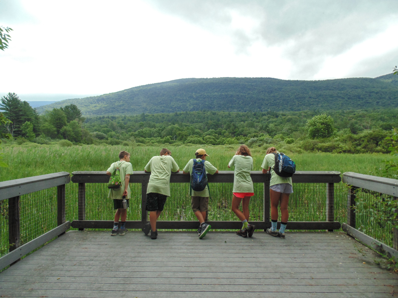Hildene Youth Corps, at the overlook